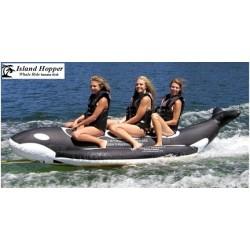 3 Passenger Whale Ride...