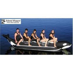 5 Passenger In Line Whale...